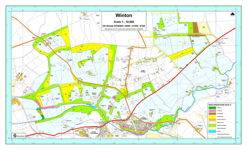 Winton Estate forestry map.